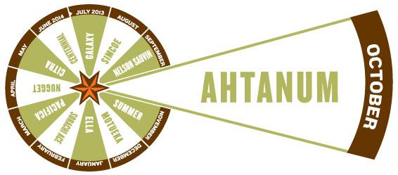 ahtanum pie