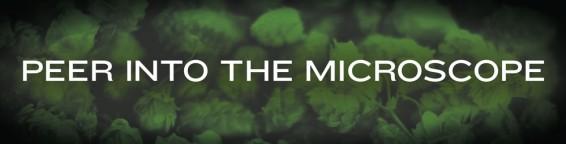 sixpoint-madsci-fair-microscope