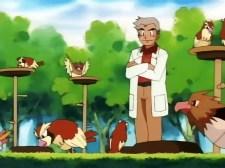 professor oak pidgey pidgeotto spearow