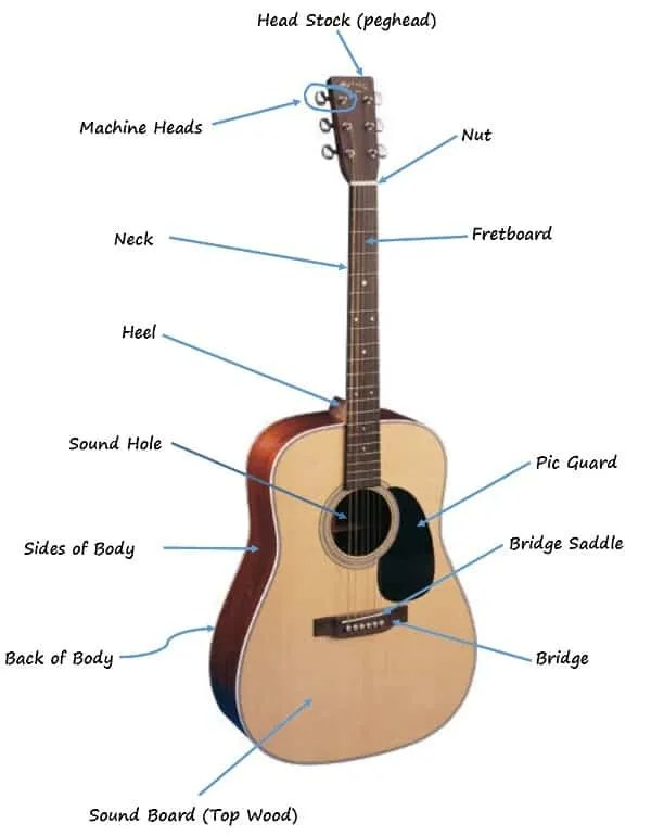 The Parts Of The Acoustic Guitar Diagram Six String Acoustic