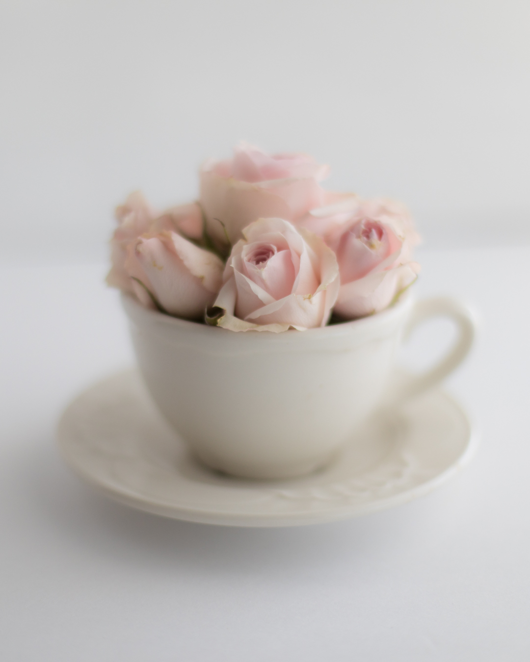 Rose Tea-1