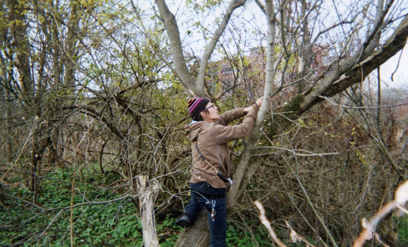 An image of a woman with a brown jacket and purple hat climbing a tree.