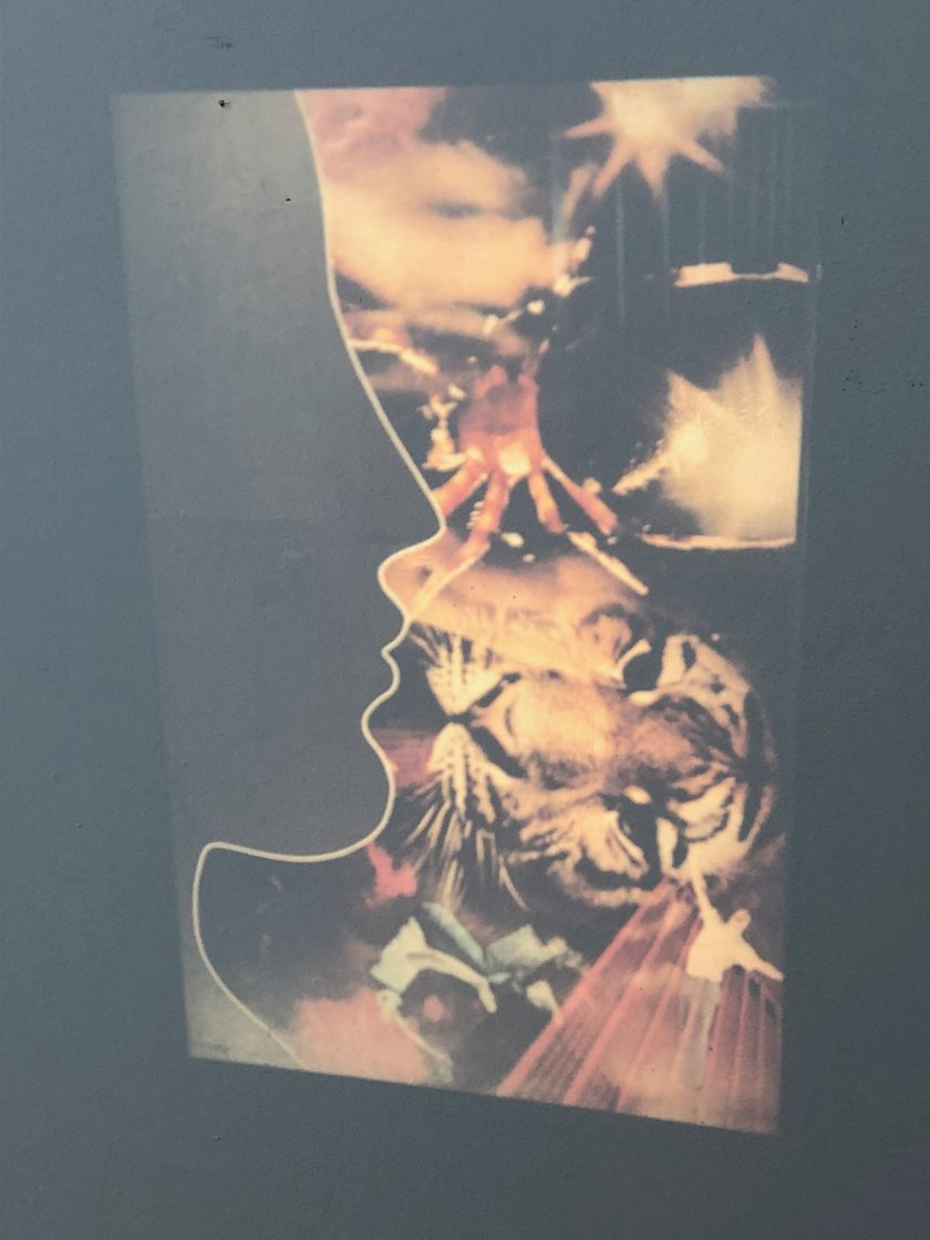 "Valeerat Burapavong. ""Untitled,"" 1973. A silhouetted profile superimposed over a collage of images associated with Thailand, including a tiger's face and a Thai dancer. Courtesy of Illinois Institute of Technology, Paul Galvin Library, Special Collections . Chicago, IL."