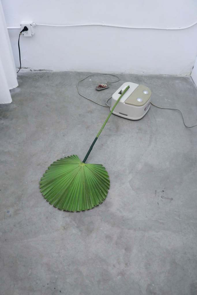 Rachel Youn, Devotee, 2019. Chi swing, artificial fan palm, and motion sensor.  Photo courtesy of the artist.