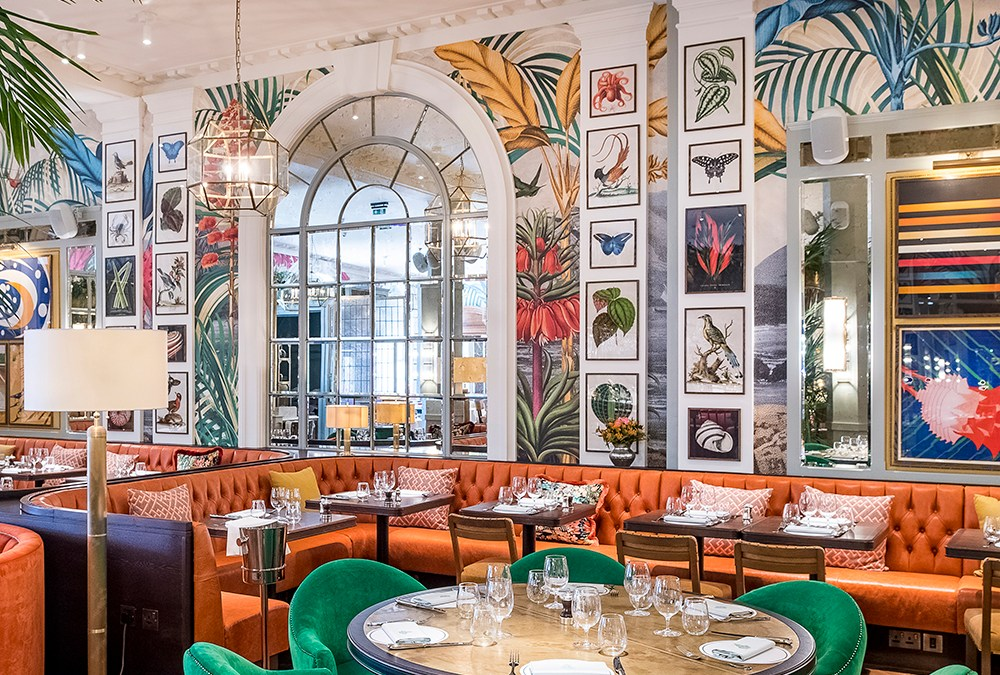 The Ivy in the Lanes Serves Casual Dining with a Maximalist Punch