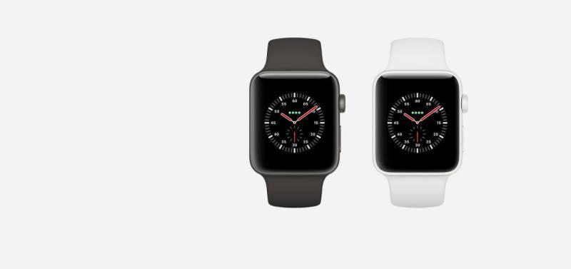 Apple Watch Edition Series 3 (1)