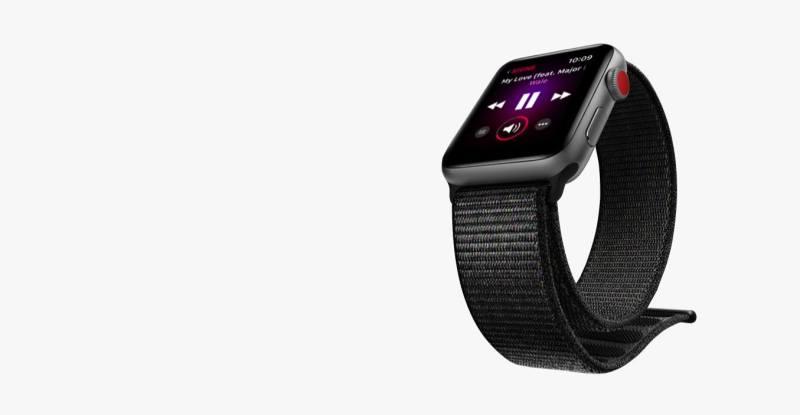 Apple Watch Series 3 (2)