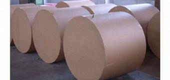 В чем причина кризиса целлюлозно-бумажной отрасли?