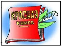 Объявлен всероссийский конкурс детского творчества под эгидой ЮНЕСКО «Красная книга глазами детей». Конкурс проводится до 31 декабря 2016 года
