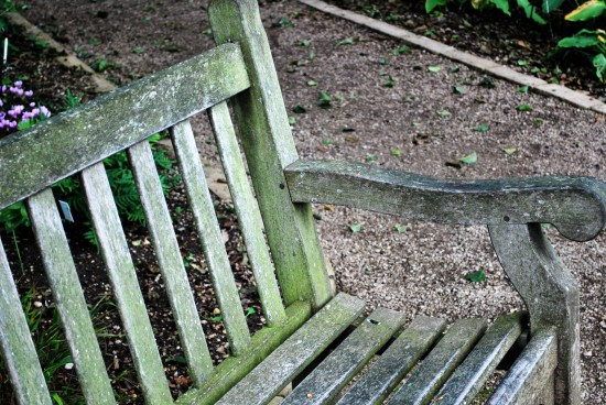 Will & Lyra's Bench in the Oxford Botanical Gardens