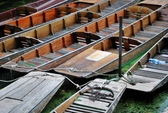 Punts Moored on the Isis