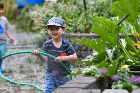 Stroum Jewish Community Center - ECS Classroom 214 (Two's) - Kesher Garden - Aug. 18, 2020