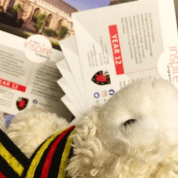 Photo of Agnes the Access Lamb reading flyers for the Year 12 Inspire Programme