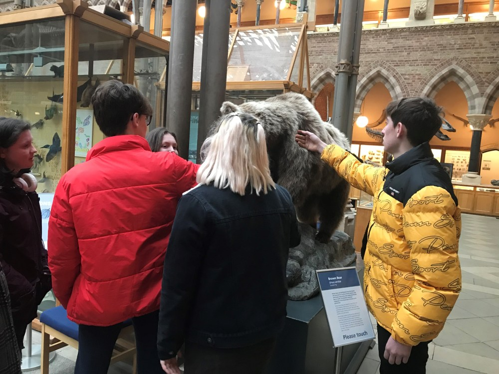 A school visit group explores Oxford's Natural History Museum