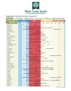 Veg planting guide also  chart from our neighbors to the north perennial post rh sjcmastergardeners wordpress