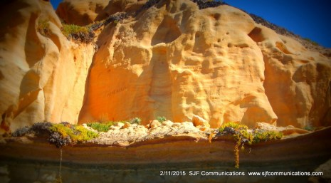 Rock Formation at Torrey PInes State Beach;SJF Communicationswww.sjfcommunications.com