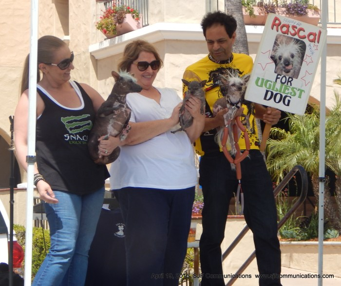 Winners of the Ugly Dog Contest