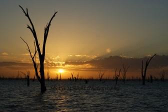 Sunrise over Lake Mulwala