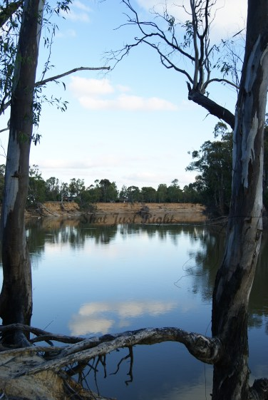 Murray River in July
