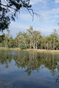 Murray River down Headworks Road, Echuca