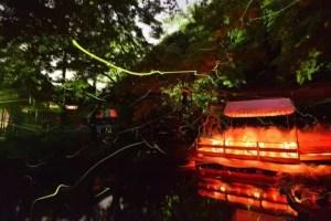 鶴岡八幡宮ほたる祭り2017放生祭の日程や見どころ、駐車場は?