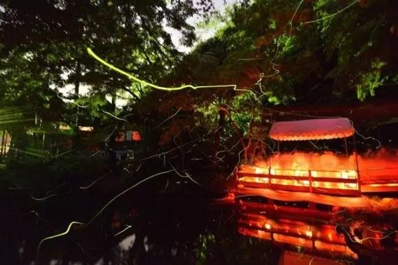 鶴岡八幡宮ほたる祭り2016放生祭の日程や見どころ、駐車場は?
