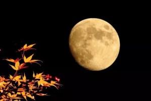 十三夜の月(栗名月) 2017年はいつ?読み方は?