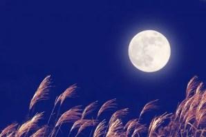 中秋の名月2017年はいつ、由来は?その日に満月は見れるの?