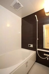 お風呂場のタイルやゴムパッキンの黒カビをキレイに落とす方法