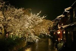 京都の夜桜ライトアップの名所や穴場スポット10選!