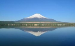 静岡でお土産を買うならコレ【絶対喜ばれるランキング】