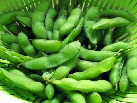 枝豆の栄養と茹で方のコツと茹で時間【美味しくなる秘訣】