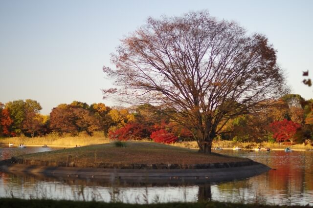 秋分の日いつ