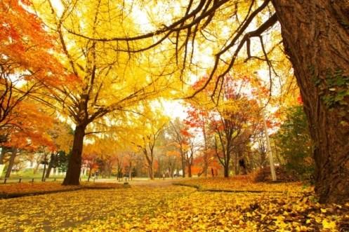 立秋 いつ
