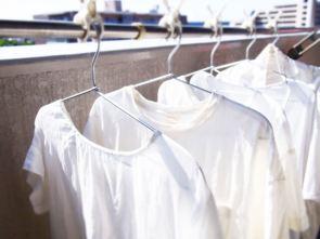 蚊取り線香 洗濯物