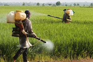 pesticídy_životné_prostredie_sex