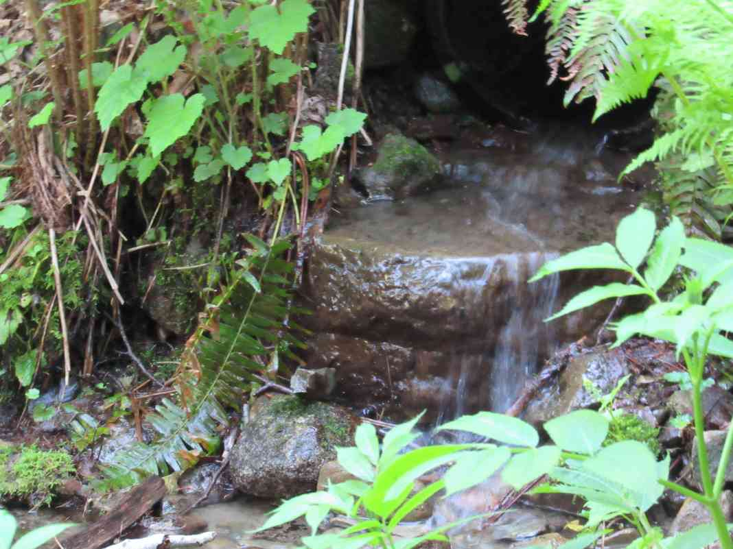Hikes with waterfalls Skagit County cascade