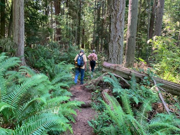 Kiket Island trail-north-side-Kiket