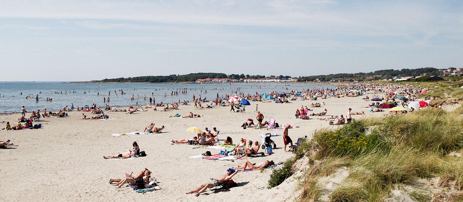 Plaża Apelviken