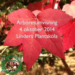 Arboretumvisning 4 oktober