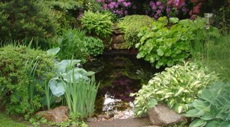 Öppen trädgård 24 maj 2015