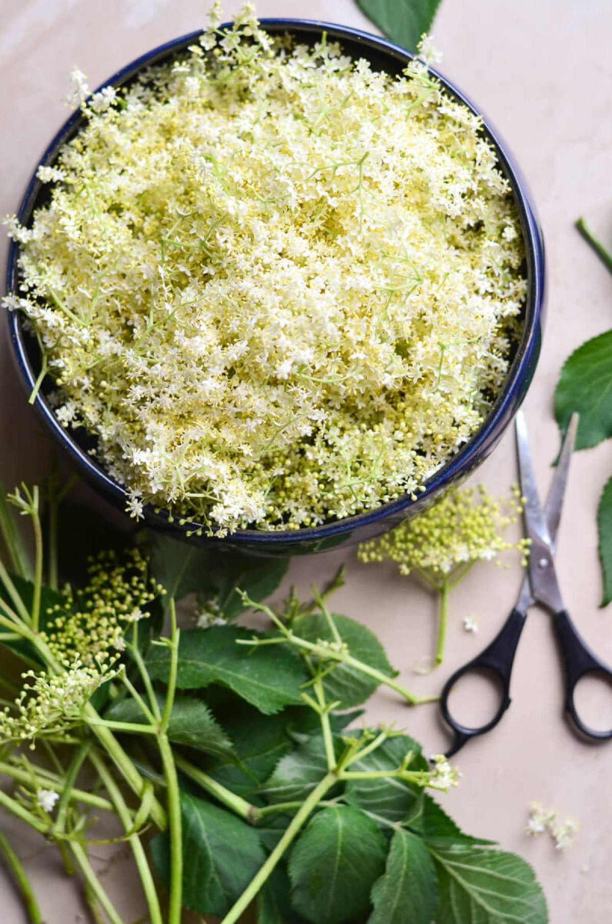 seivamedzio ziedu sirupas skanios dienos (5)