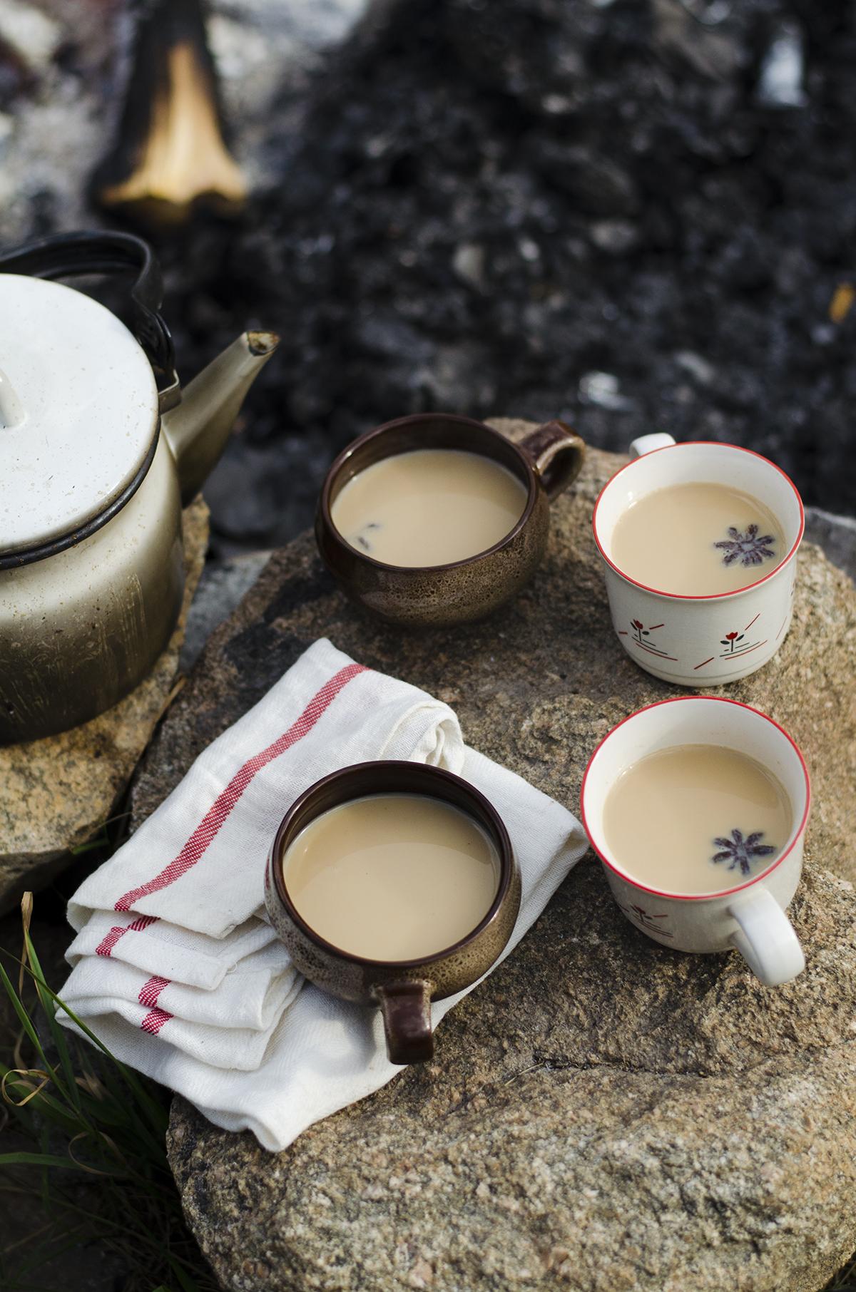 Šildanti prieskonių arbata3
