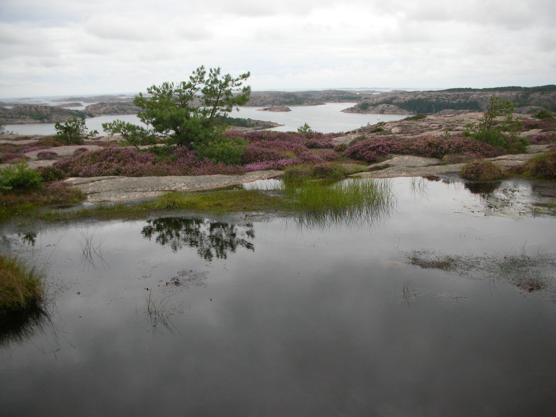 Un paesaggio montano della Svezia FOTO GIUSEPPE MARANO
