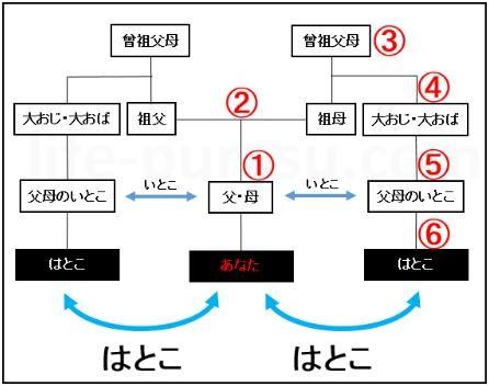はとこの家系図