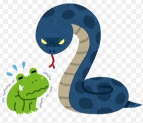 蛇に睨まれた蛙