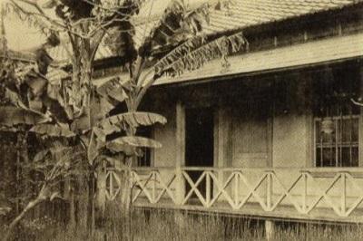漱石山房の芭蕉