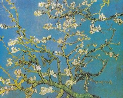 『花咲くアーモンドの木の枝』1890年2月、サン=レミ。