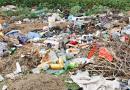 Dbajmy wspólnie o środowisko – zgłoś dzikie wysypisko