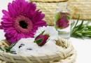 Kosmetyki ajurwedyjskie: przyjemność dla zmysłów i dużo więcej